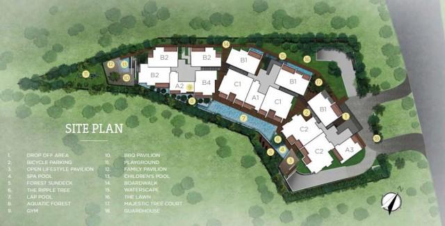 311-thomson-site-plan1