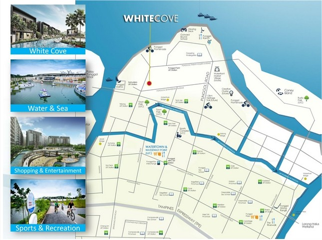 White Cove Location